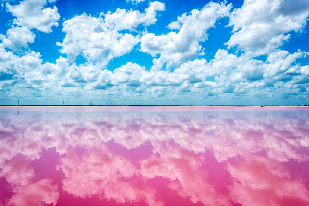 La-laguna-rosa-di-Las-coloradas-yucatan