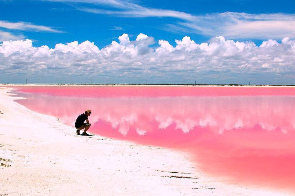 map of mexico and cancun with Laguna Rosa Las Coloradas Yucatan on Itineraries For A Day At Xcaret Theme Park Playa Del Carmen furthermore Laguna Rosa Las Coloradas Yucatan besides Los Cabos moreover Playa Delfines Cancun moreover Paradisus Cancun Resort Mexico.