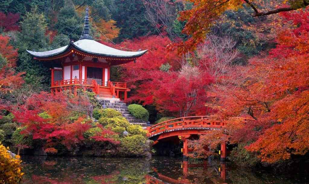 foliage-giappone-kyoto-tempio-daigo-ji-bis