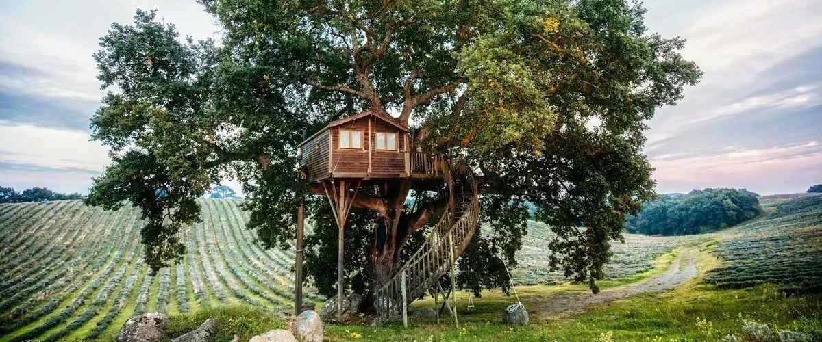 dove-soggiornare-casa-sull-albero-italia